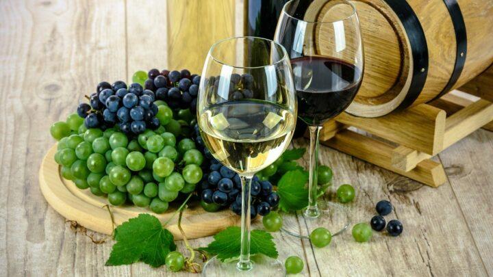 Comprare vino online: un piccolo vademecum