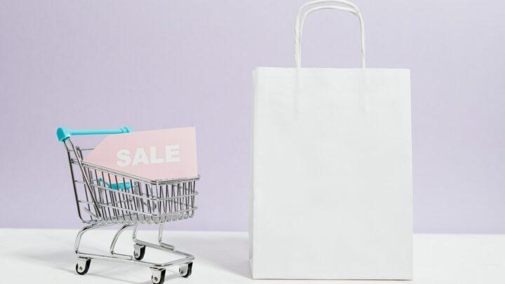Come fare la spesa online e su quali siti: la guida